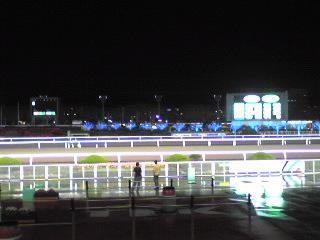 大井競馬トゥインクルレース