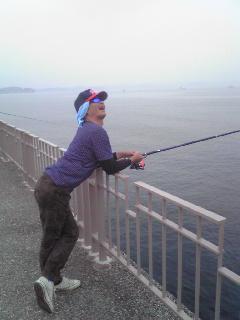 この海に本当にお魚いるかしら