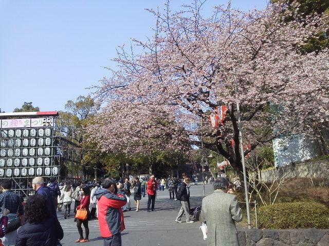 春の良き日に